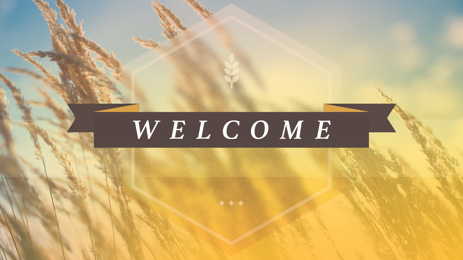 Welcome (Web).jpg