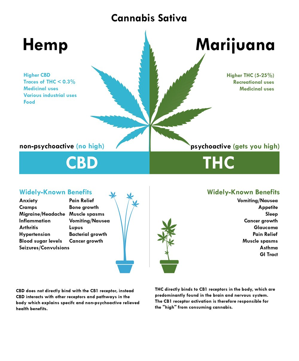 HEMP V S  MARIJUANA: WHAT'S THE DIFFERENCE? — Laws of