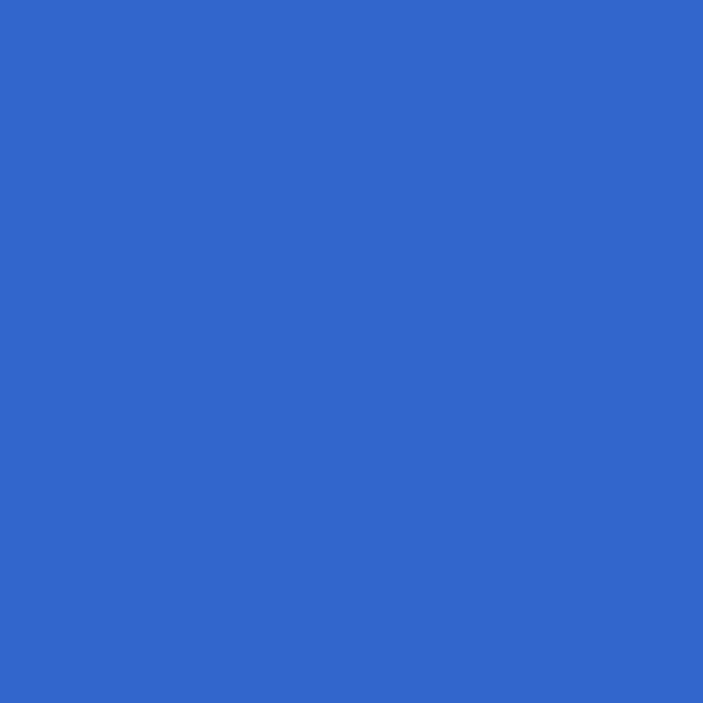 walter-fetscher-bergfuehrer-logo-blue.png