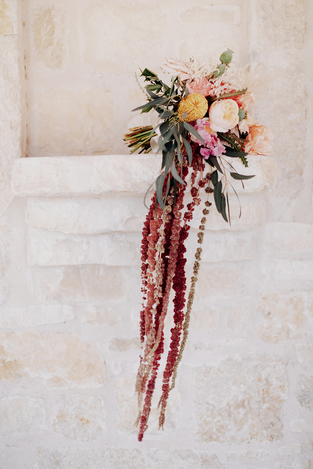 Featured: Hanging Amaranthus