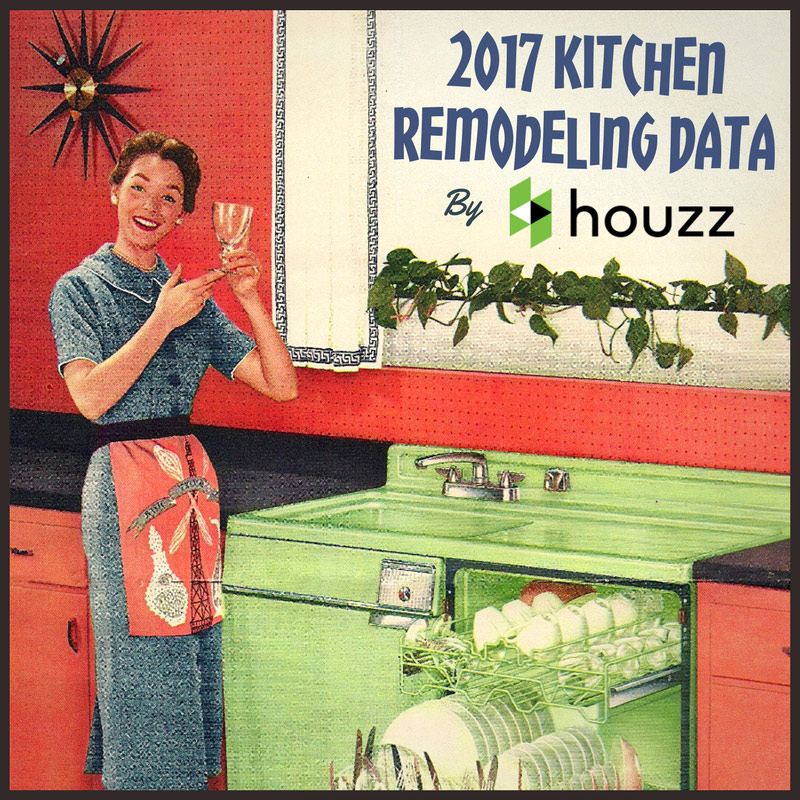 Learn what are homeowners willing to spend on a kitchen remodel in 2017 and what features and materials they are looking for.