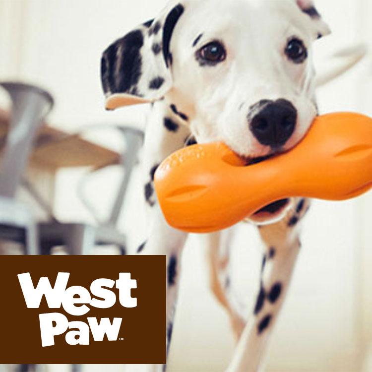 west-paw-3.jpg