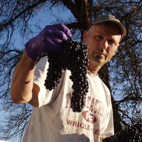 montoliva-vineyard-winery.jpg