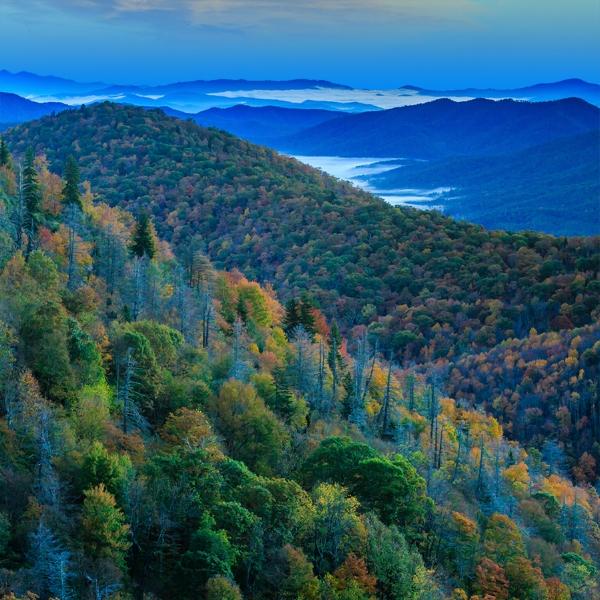 Blue-Ridge.jpg