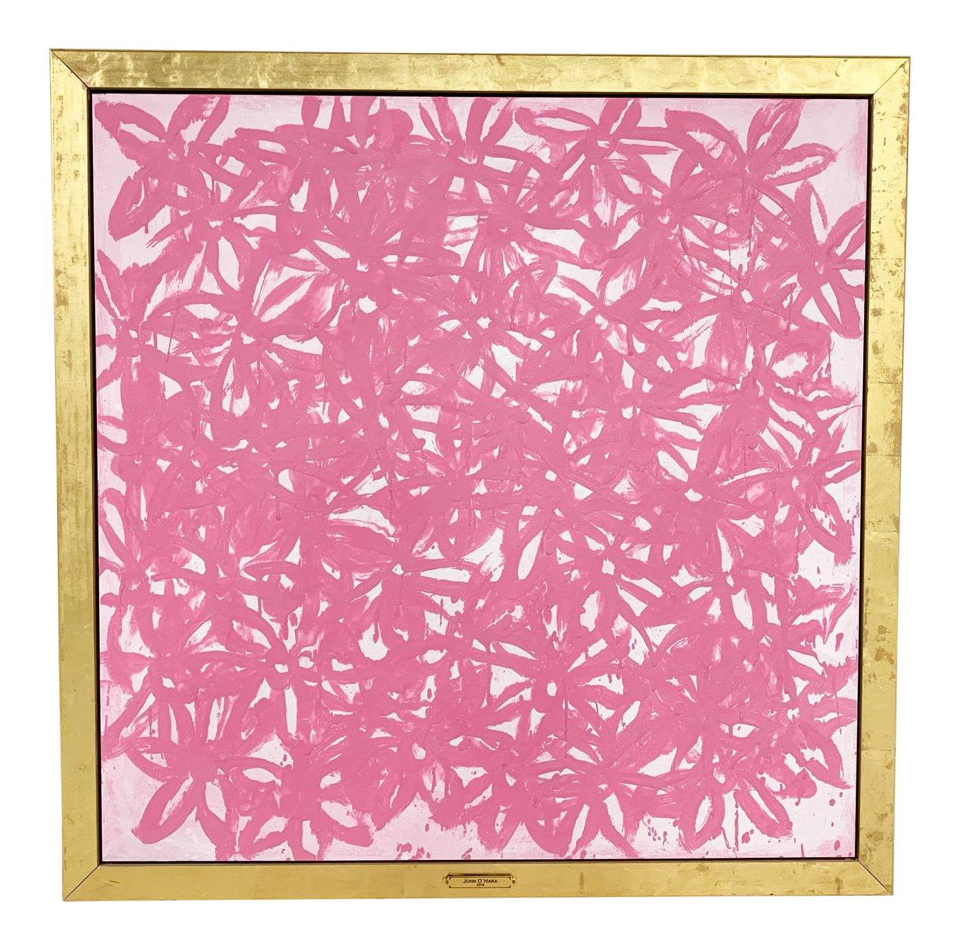 Daisies, Pink.