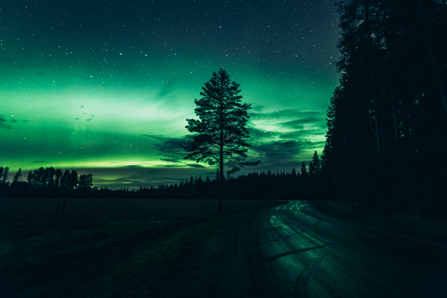 Another green night