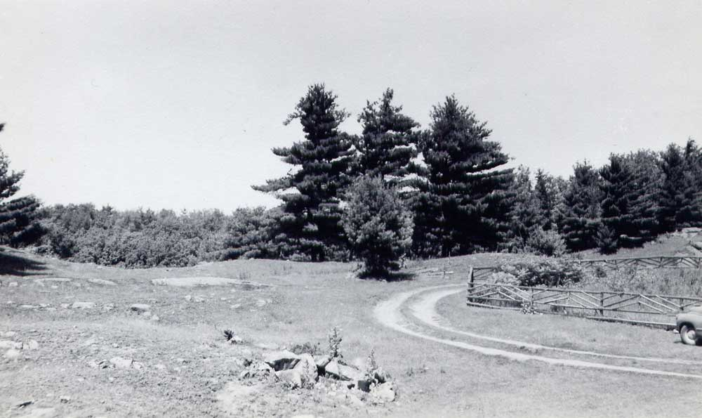 A corner of the Cobblestone property about 1950. Barren hill top and new growth forest show transformation from pre-WWI logging and farming.