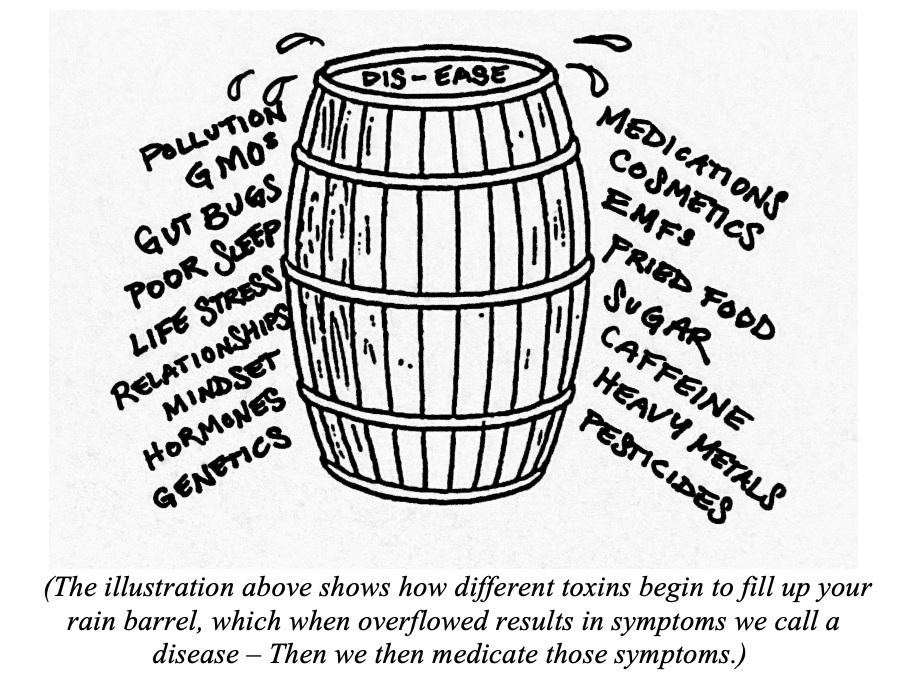 The Rain Barrel Effect, page 115