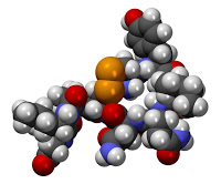 Oxytocin  is a  hormone  that acts primarily as a neurotransmitter in the brain.