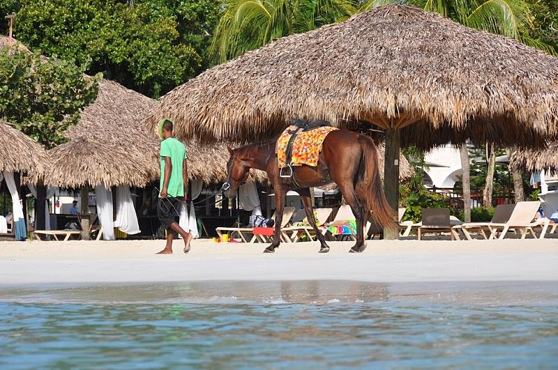 Beaches Negril