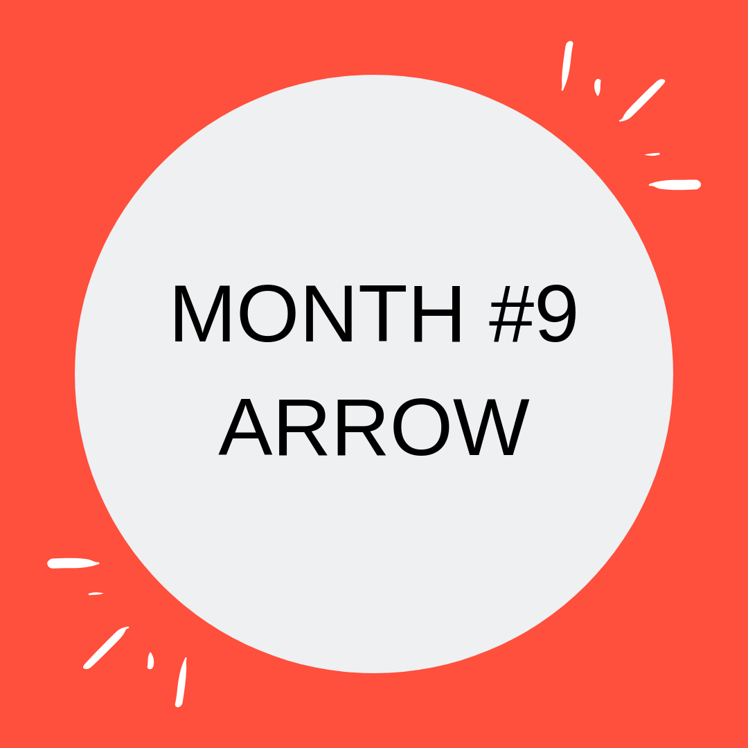 MONTH #9 ARROW.png