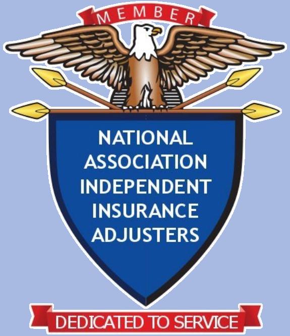 naiia-logo-white.png
