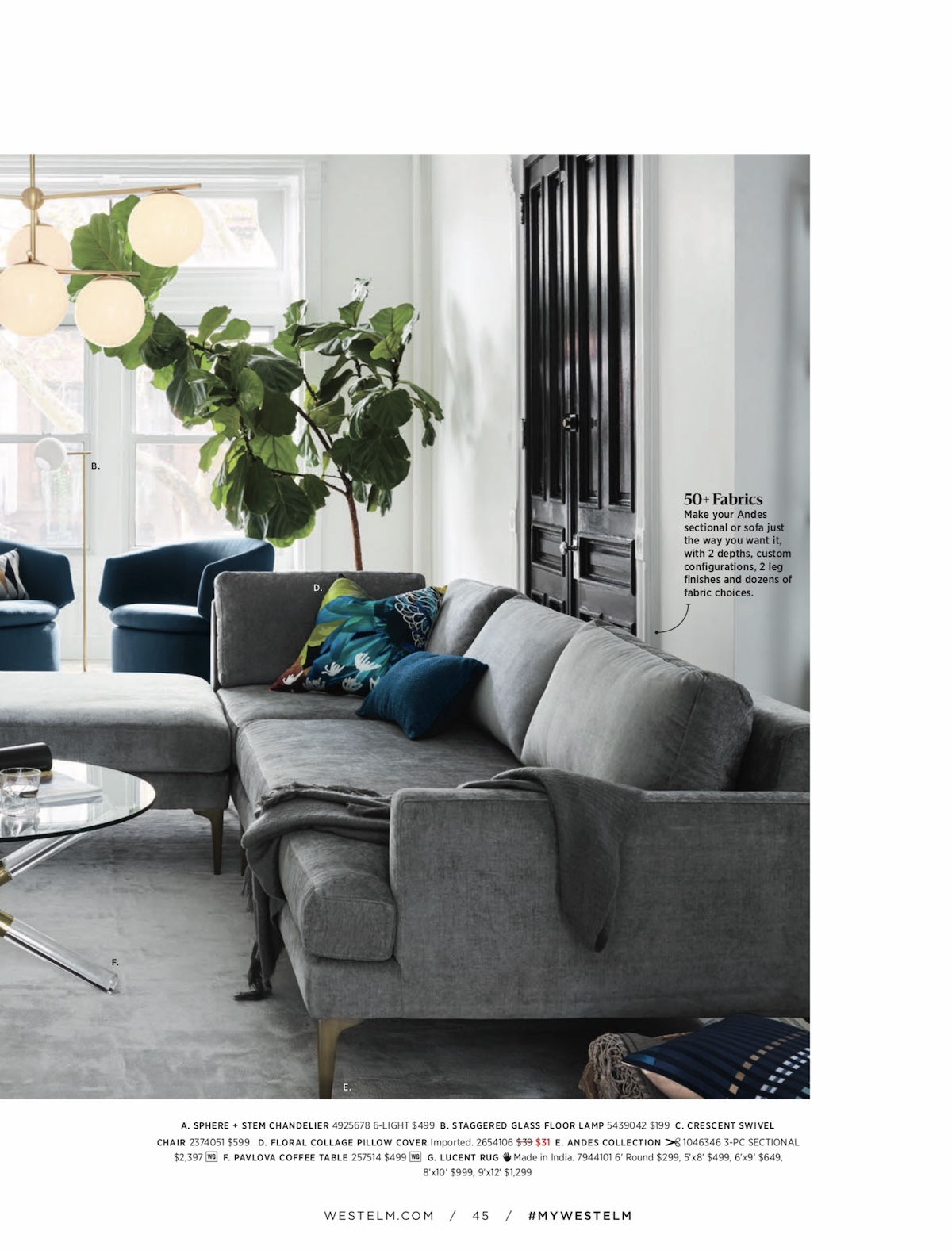 A    Fiddle Leaf Fig Tree    creating visual interest against white walls and windowpanes. Photo:    West Elm   .