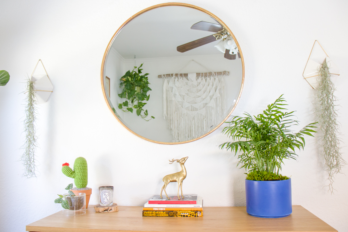 Palms are great air-purifying plants, making them excellent choices for plants for bedrooms.