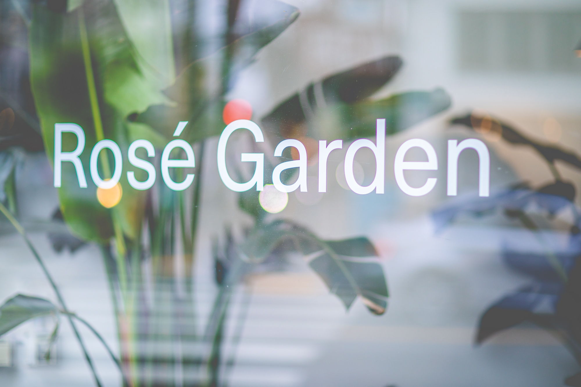 The Rosé Garden is a temporary installation inside  Usual Wines'  new retail space on Chestnut Street.