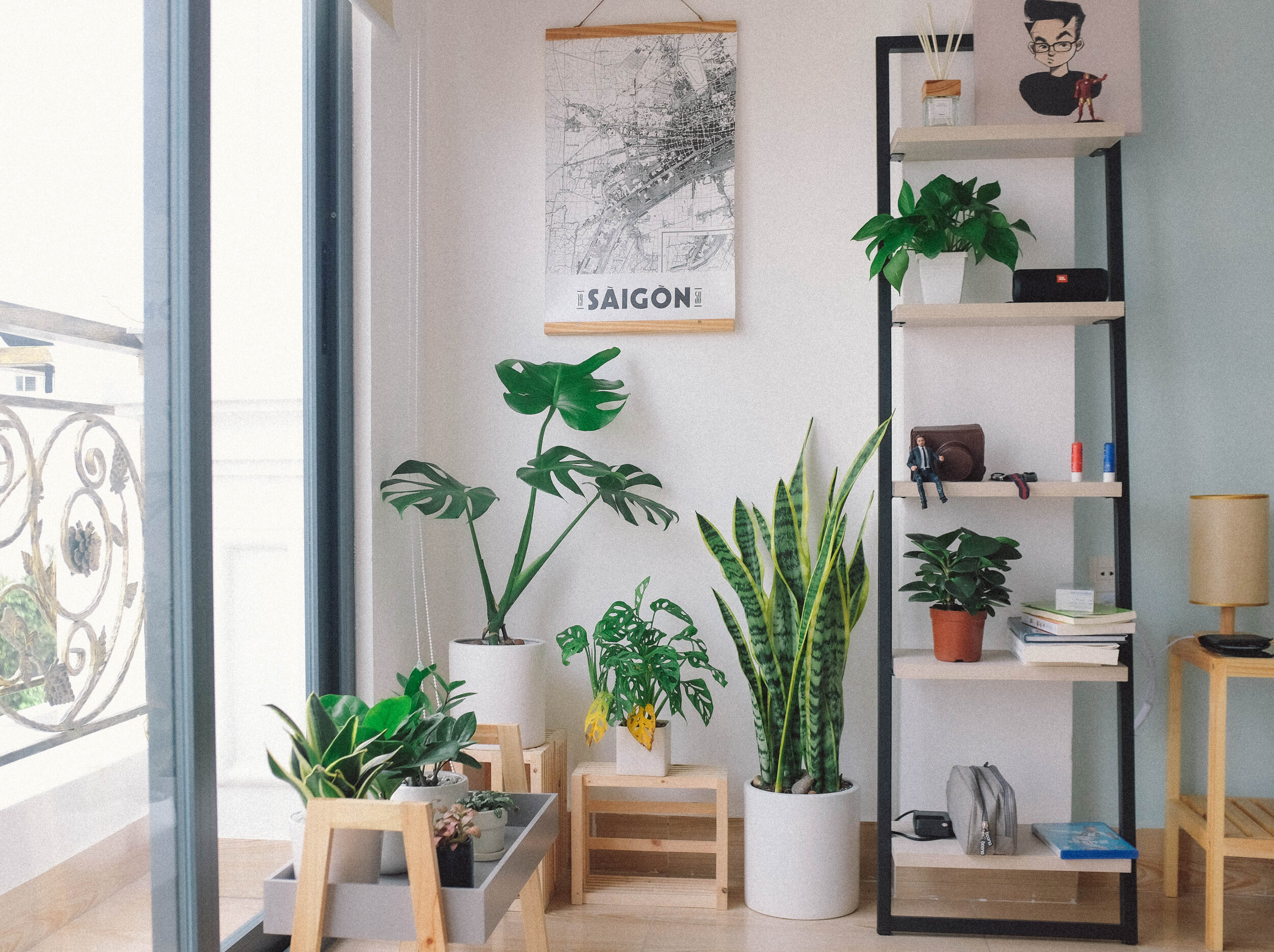 How To Decorate A Small Living Room With Plants La Residence Plant Care Tips And More