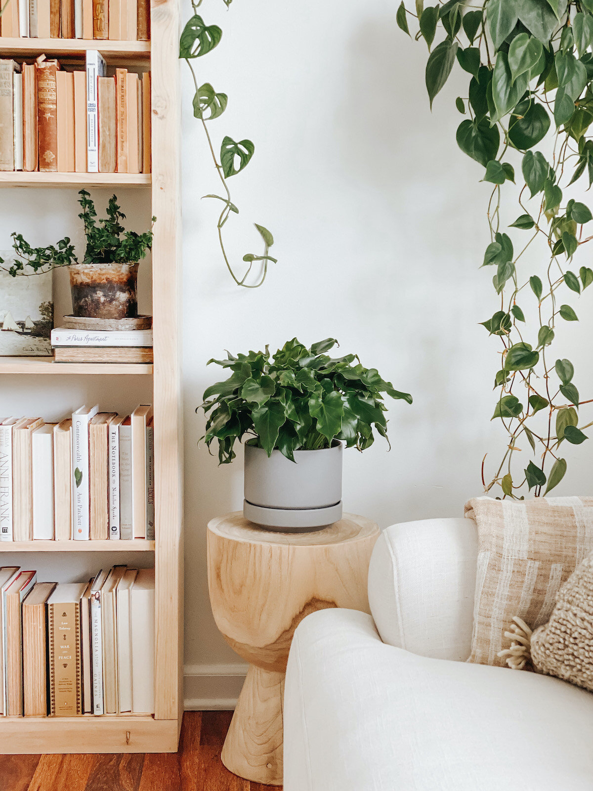 6 Secrets Of Scandinavian Design And How To Use Them La Residence Plant Care Tips And More