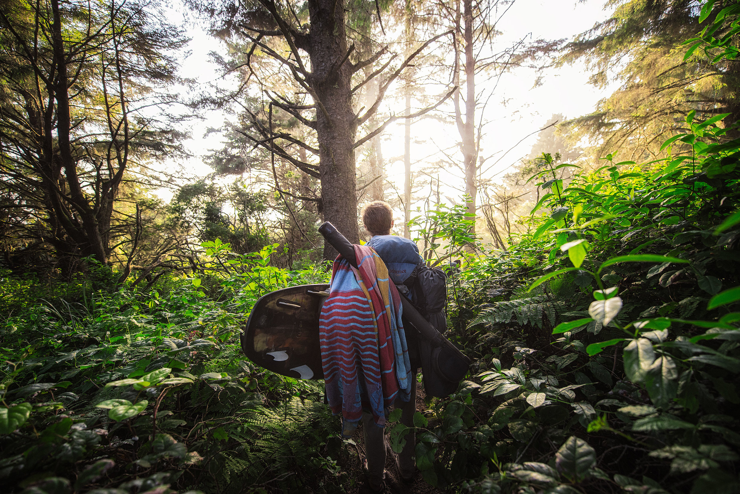 austin-trigg-redwood-water-bottle-beach-forest-california-adventure-tree-surfboard-camping-hike.jpg
