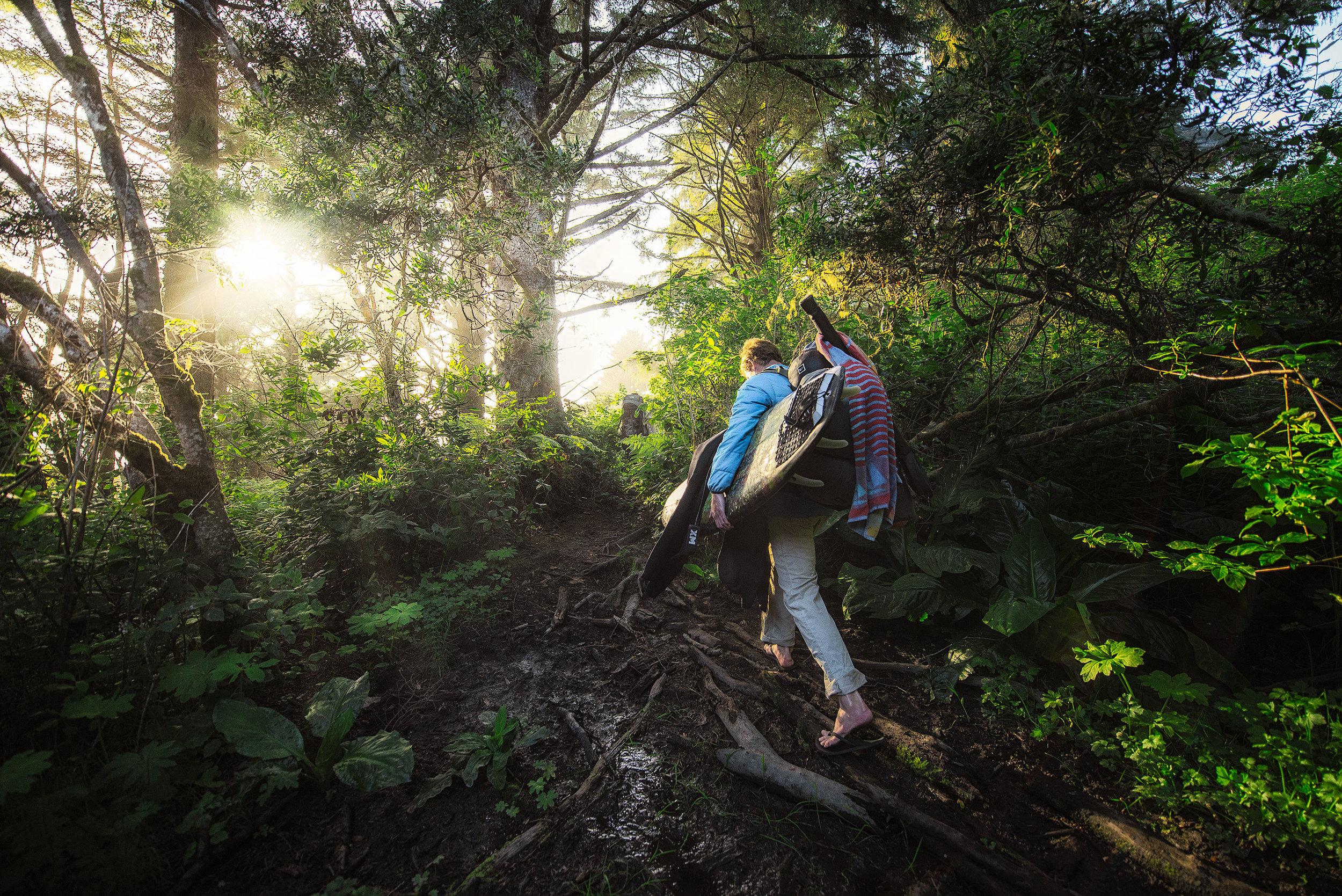austin-trigg-redwood-water-bottle-hike-beach-california-sunshine-forest-surfboard-adventure.jpg