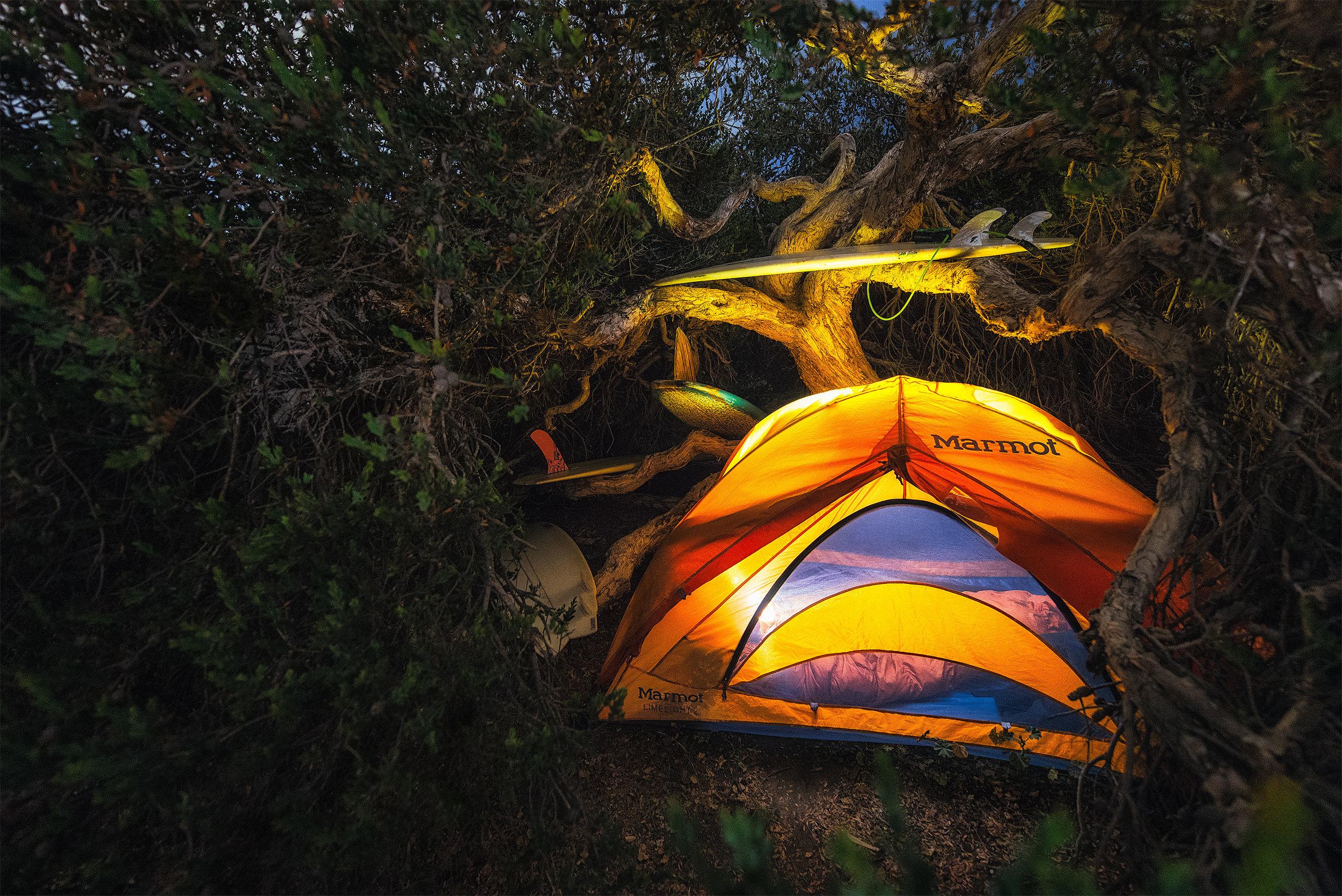 austin-trigg-southern-california-San-onofre-camping-surfboard-tree.jpg
