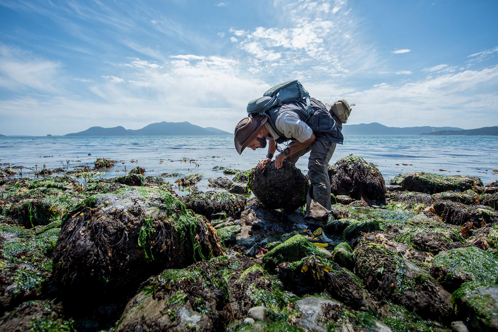 austin-trigg-brave-wilderness-orcas-island-tide-pool-rock-turn-over.jpg
