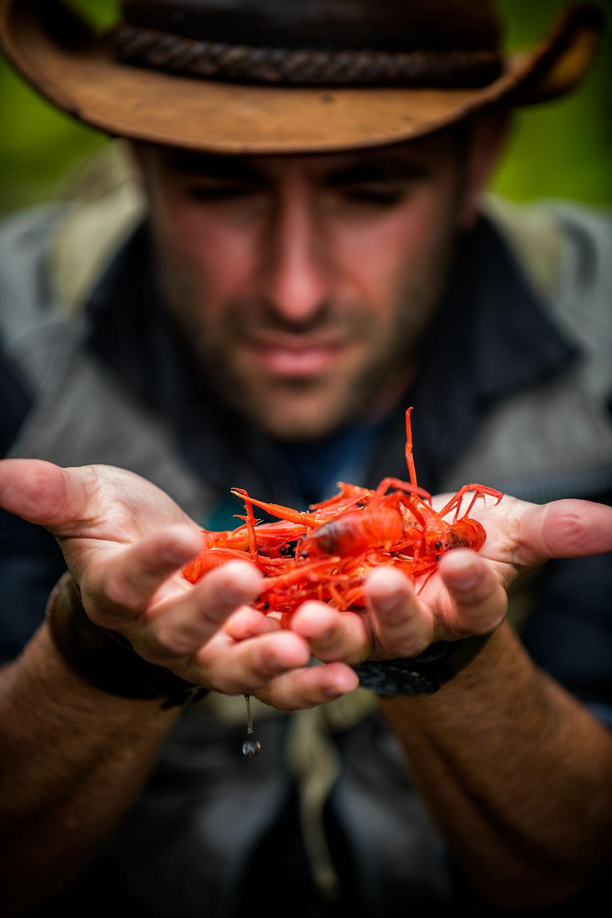 austin-trigg-brave-wilderness-la-jolla-california-Cyote-Peterson-Tuna-Crabs.jpg