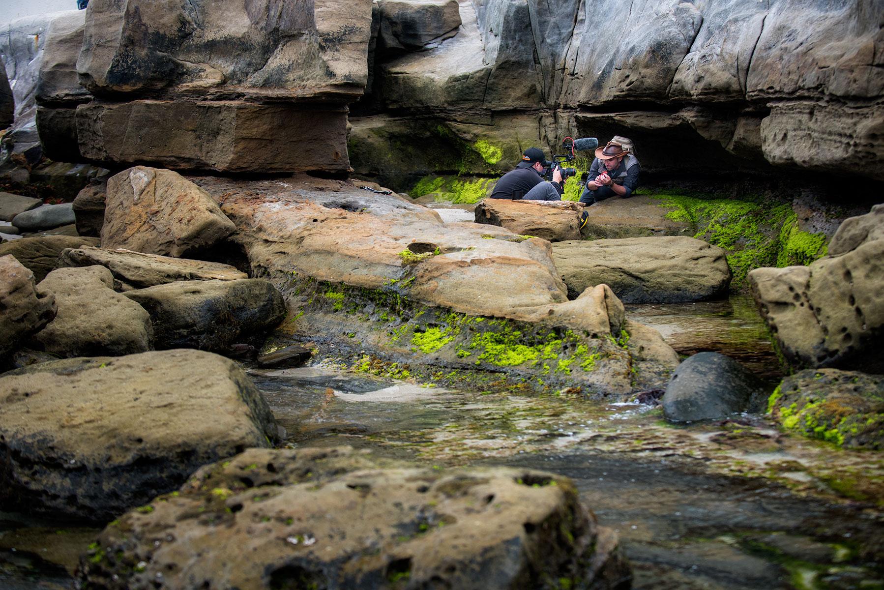 austin-trigg-brave-wilderness-la-jolla-california-reef-filming.jpg