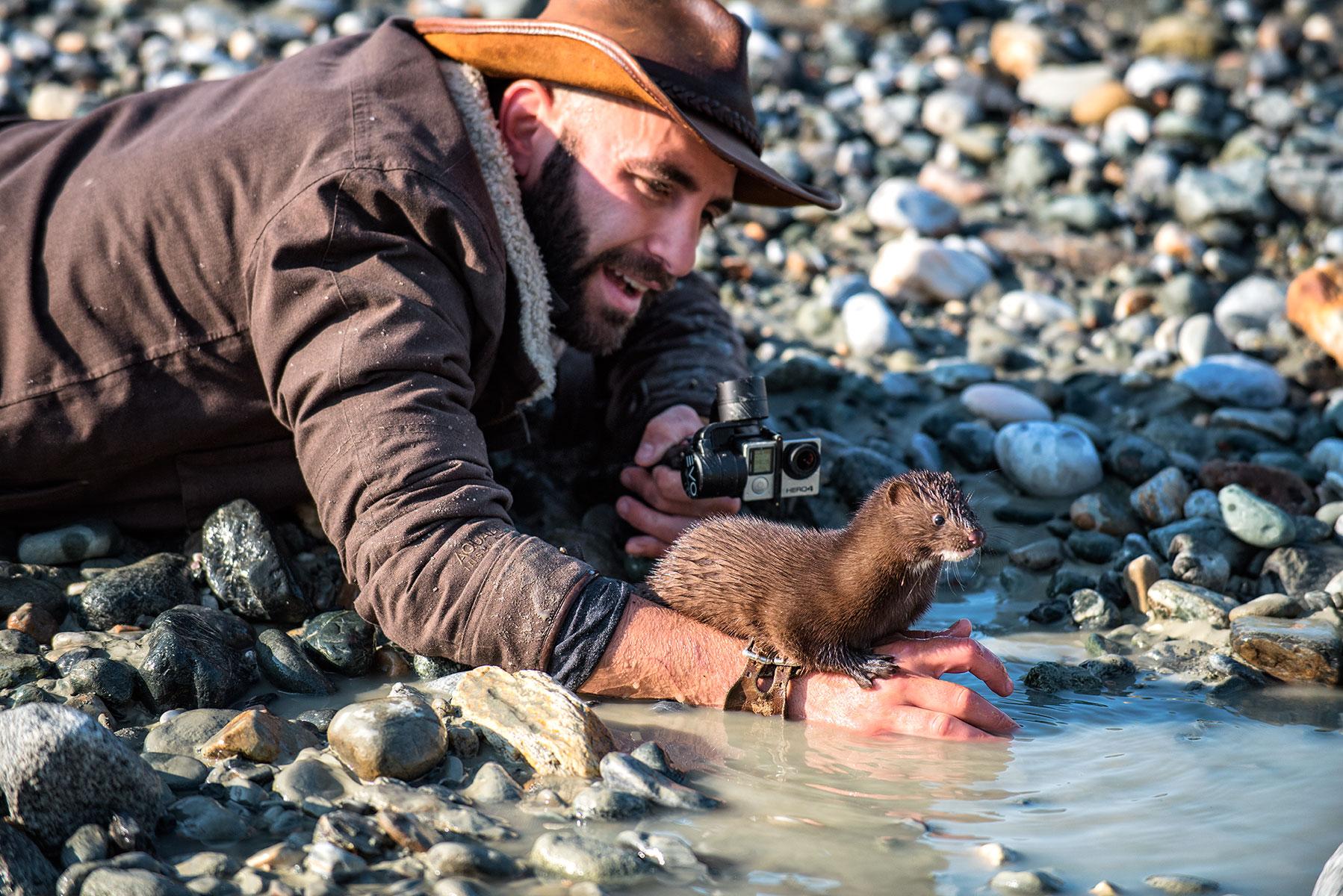 austin-trigg-brave-wilderness-alaska-BW-Coyote-Plays-Mink-river-bed.jpg