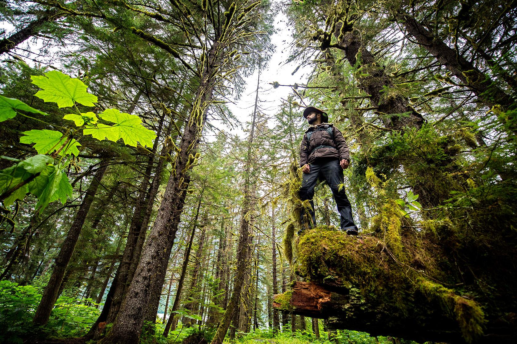 austin-trigg-brave-wilderness-alaska-BW-Coyote-Stands-on-Log-Salmon-Hole.jpg