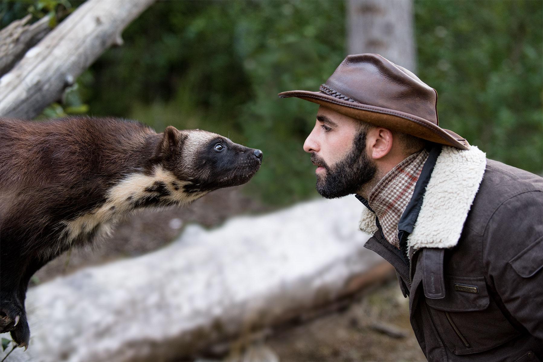 austin-trigg-brave-wilderness-alaska-Coyote-Wolverine-Faces-moved.jpg