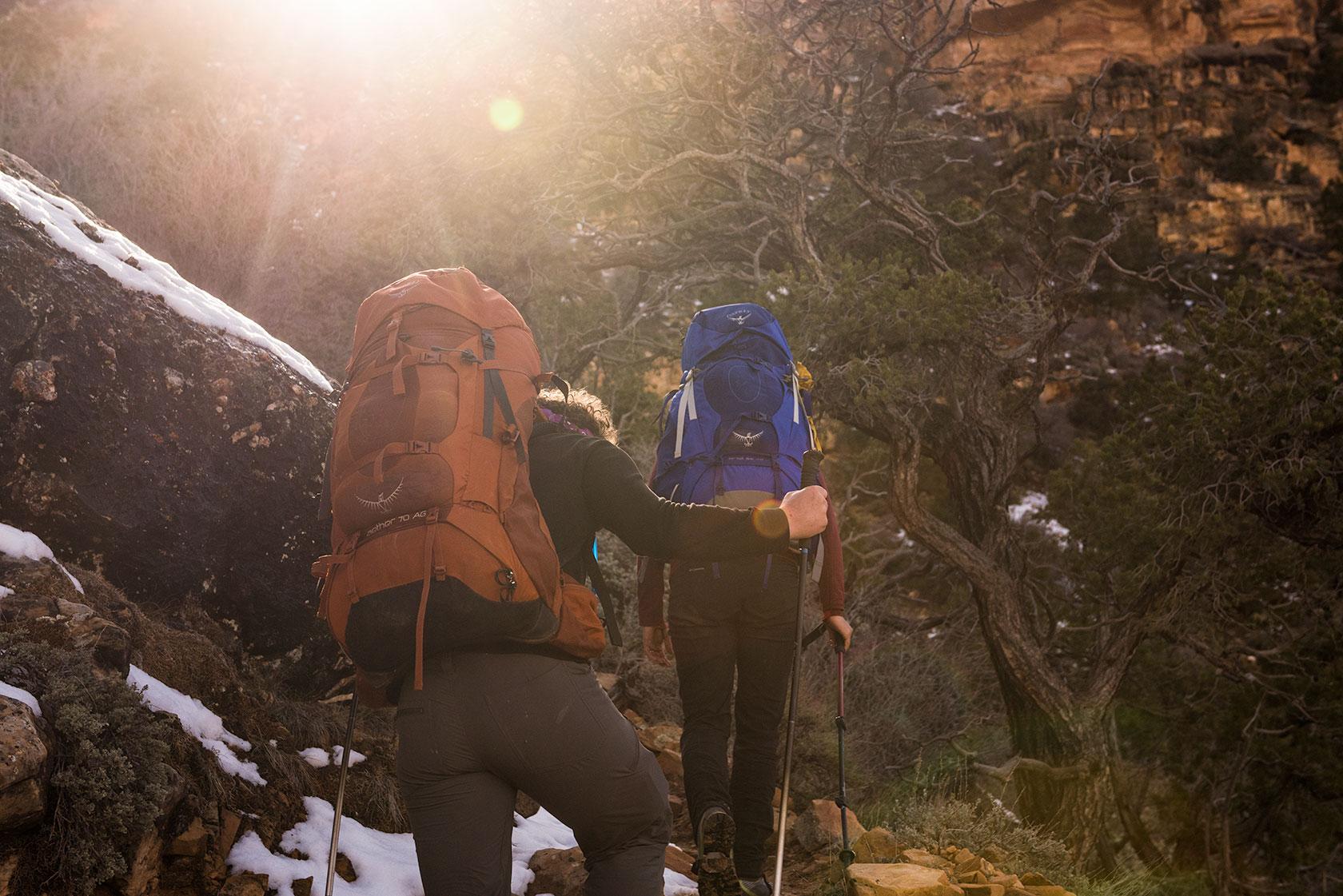 austin-trigg-osprey-hiking-backpacks-grand-canyon-osprey-pack-bag-arizona-hike-camp-sun-flare-tree-trail-afternoon.jpg