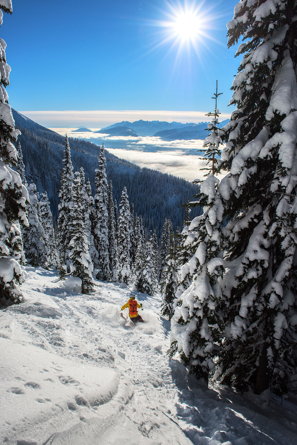 austin-trigg-patagonia-banff-alberta-winter-revelstoke-side-country-canada-trip-adventure-outside-snow-forest-backcountry-skiing.jpg