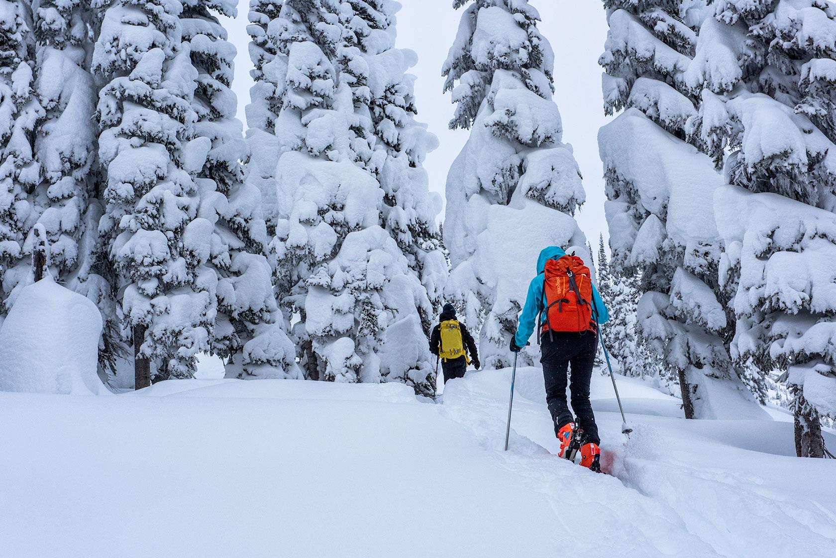 austin-trigg-patagonia-banff-alberta-winter-ski-tour-rogers-pass-powder-adventure.jpg