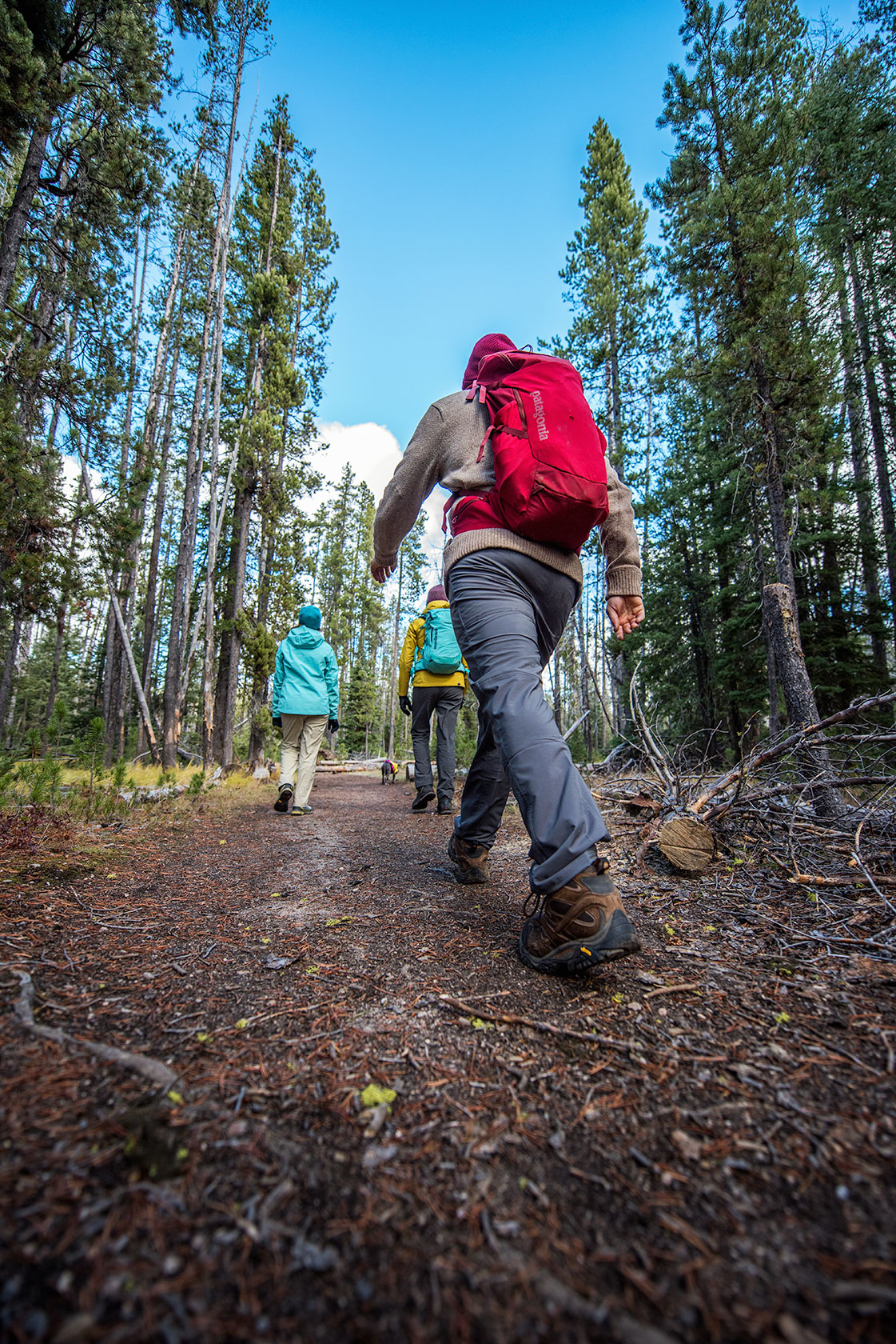 austin-trigg-patagonia-sawtooth-hiking-advenure-wilderness-forest-idaho-outside-lifestyle-day-fall-weather-mountains-backpack-pants.jpg