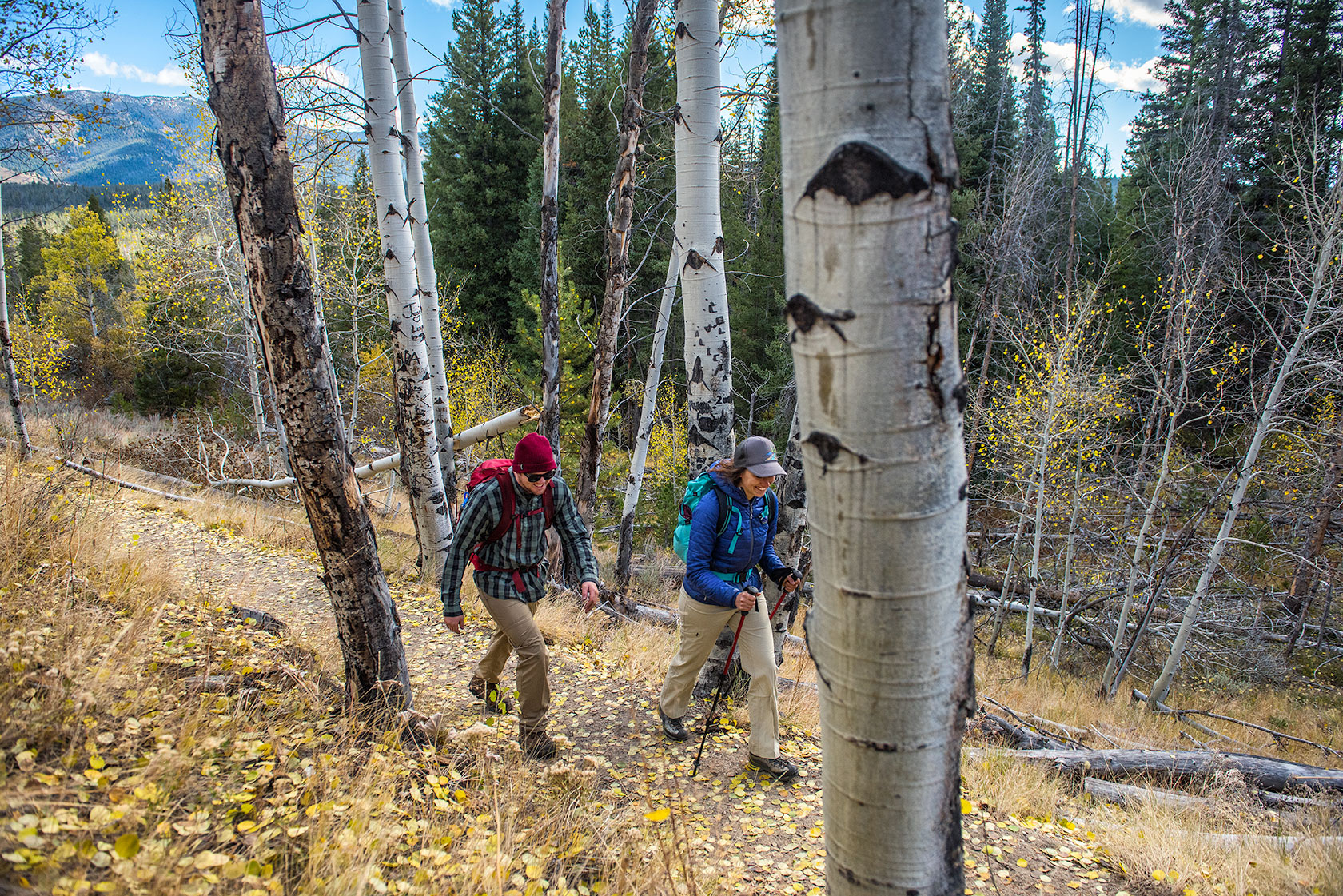 austin-trigg-patagonia-sawtooth-hiking-advenure-wilderness-forest-idaho-outside-lifestyle-day-fall-weather-mountains-aspen-grove.jpg