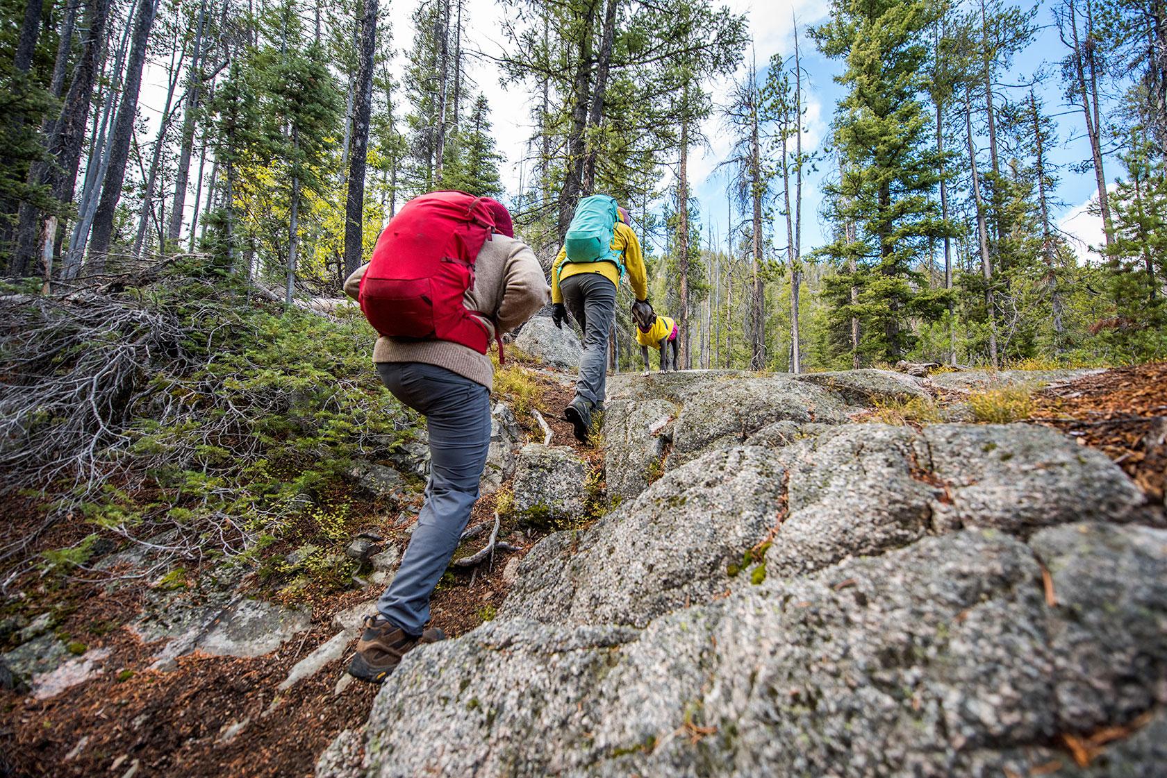 austin-trigg-patagonia-sawtooth-hiking-advenure-wilderness-forest-idaho-outside-lifestyle-day-fall-weather-mountains-bushwhack.jpg