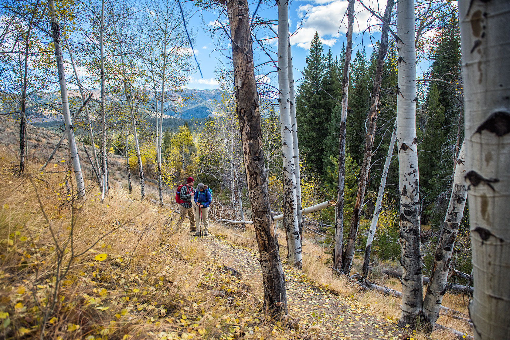 austin-trigg-patagonia-sawtooth-hiking-advenure-wilderness-forest-idaho-outside-lifestyle-day-fall-weather-mountains-couple.jpg