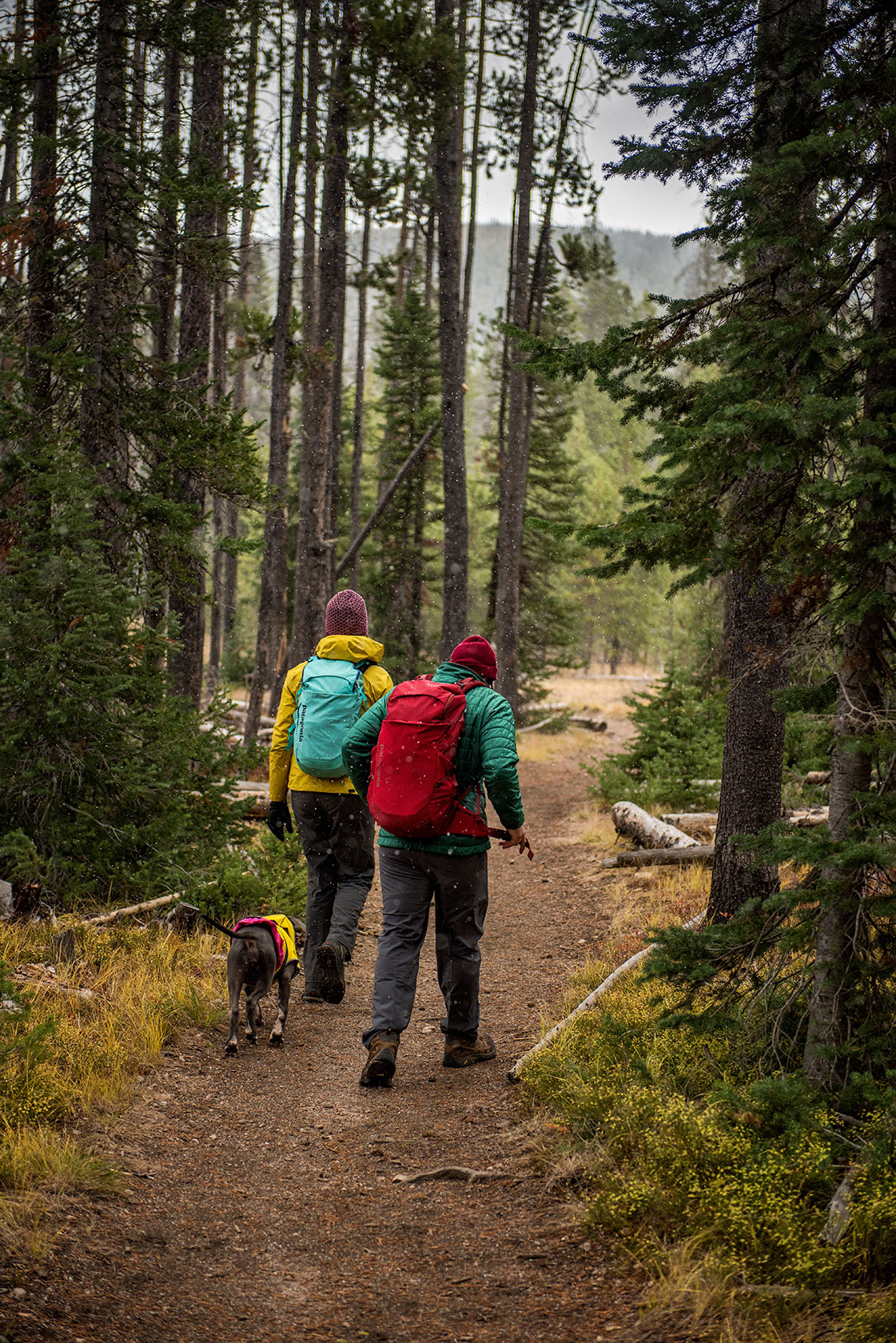 austin-trigg-patagonia-sawtooth-hiking-advenure-wilderness-forest-idaho-outside-lifestyle-day-fall-weather-mountains-snowing-long-trail.jpg