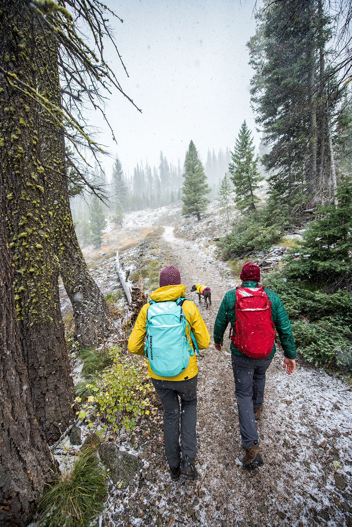austin-trigg-patagonia-sawtooth-hiking-advenure-wilderness-forest-idaho-outside-lifestyle-day-fall-weather-mountains-stanley-lake-snow.jpg