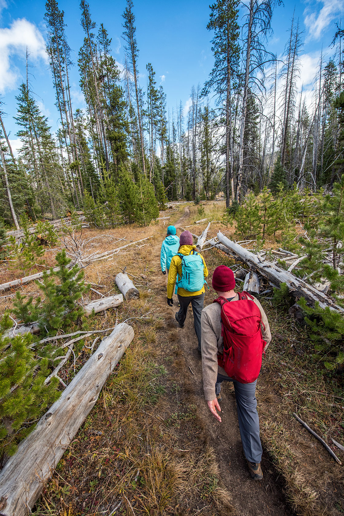 austin-trigg-patagonia-sawtooth-hiking-advenure-wilderness-forest-idaho-outside-lifestyle-day-fall-weather-mountains-trees-trail-clouds.jpg