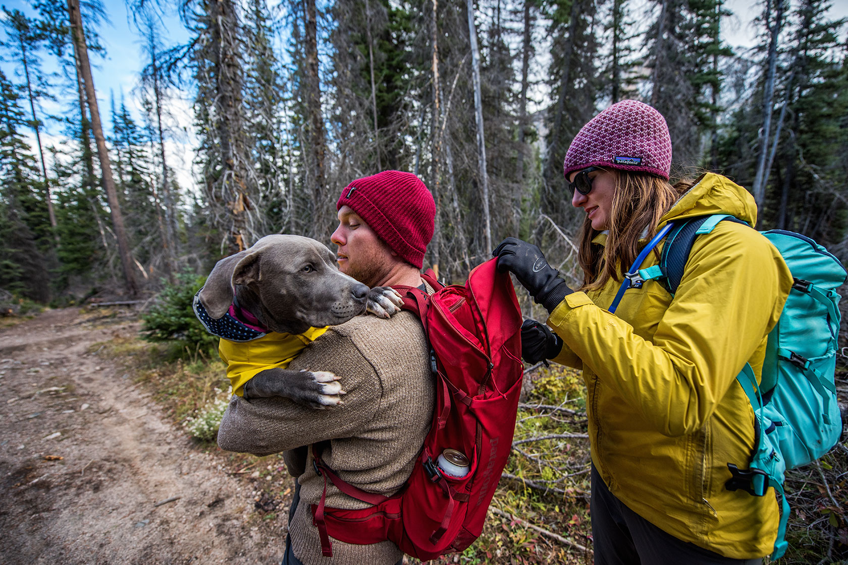 austin-trigg-patagonia-sawtooth-hiking-Dog-stanley-lake-bag-advenure-wilderness-forest-idaho-outside-lifestyle-day-fall-weather-mountains-trees.jpg