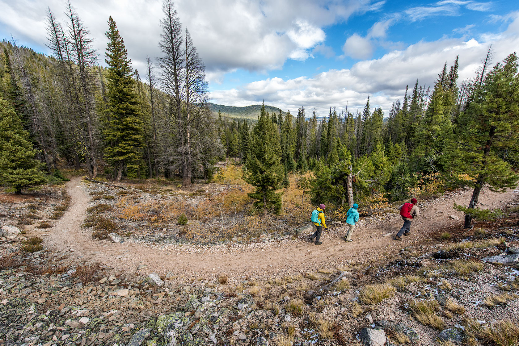 austin-trigg-patagonia-sawtooth-hiking-stanley-lake-advenure-wilderness-forest-idaho-outside-lifestyle-day-fall-weather-mountains.jpg