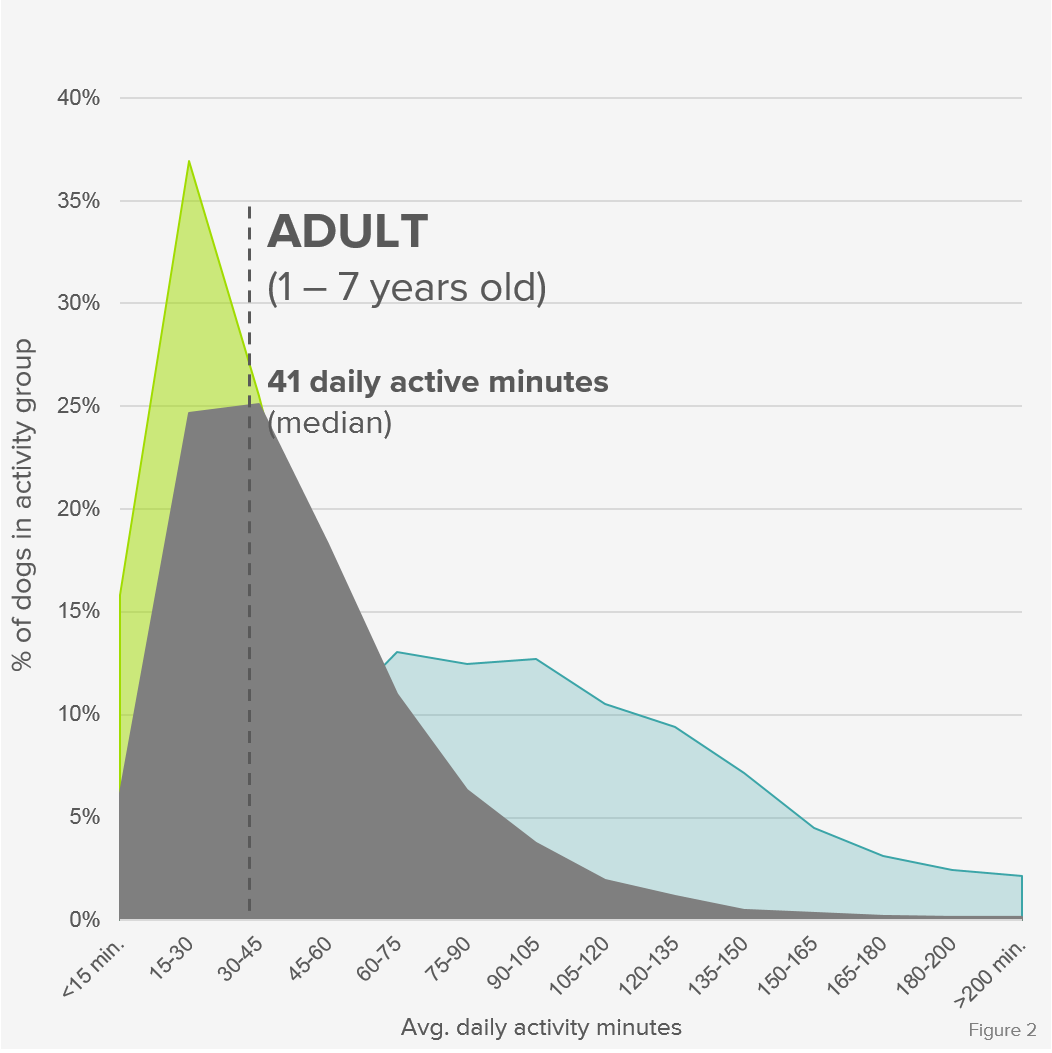 Activity_Distribution_Adult_Formatted.png