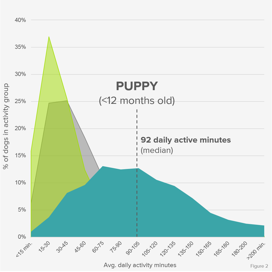 Activity_Distribution_Puppy_Formatted.png