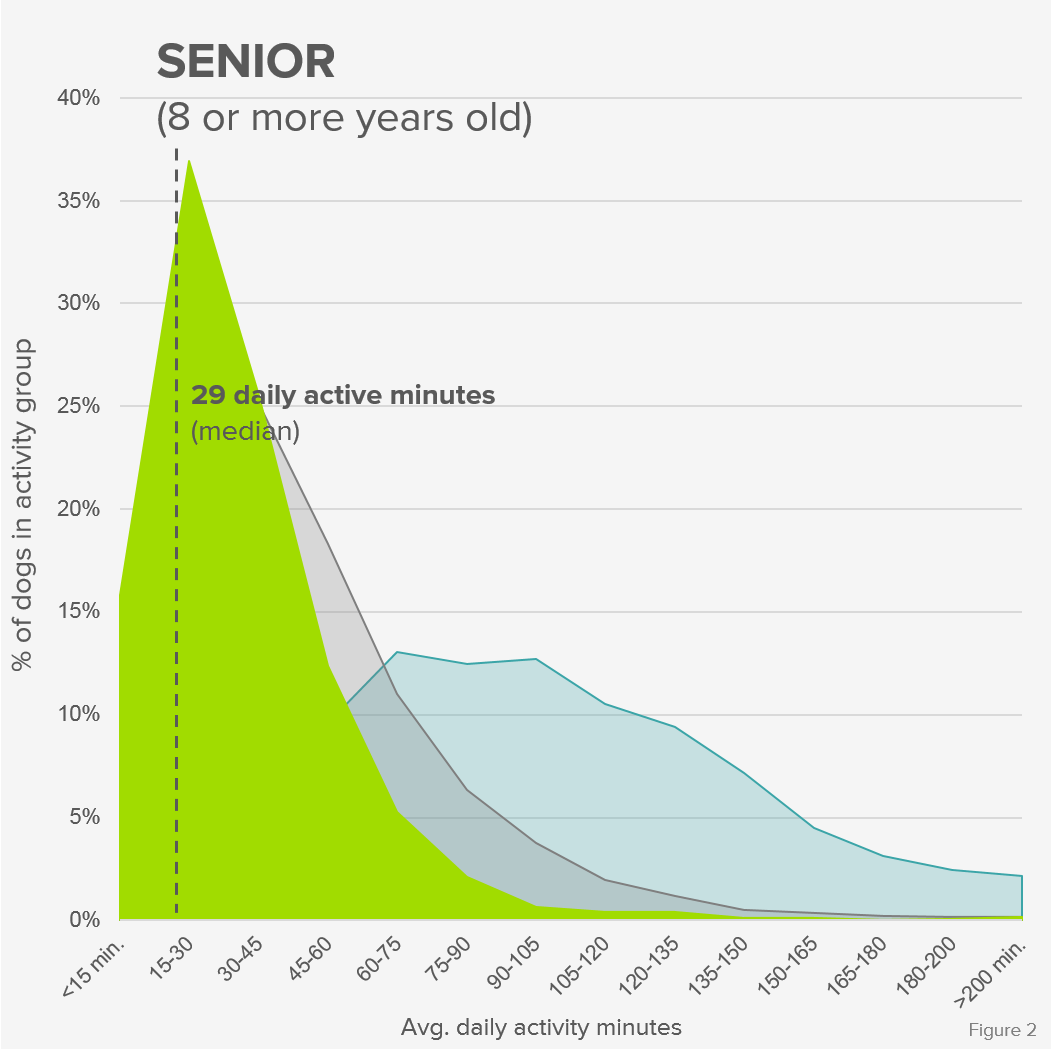 Activity_Distribution_Senior_Formatted.png