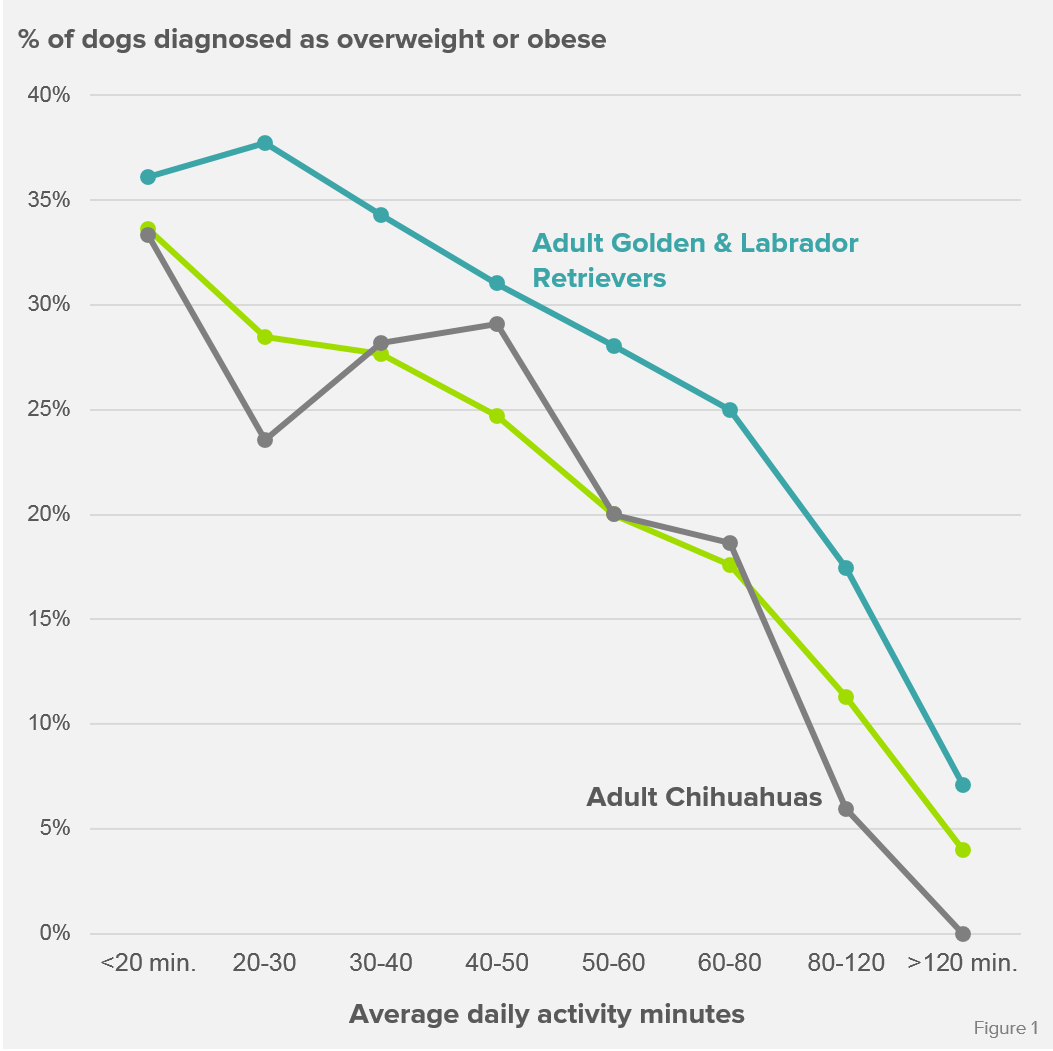 Obesity_Prevalence_breed.png