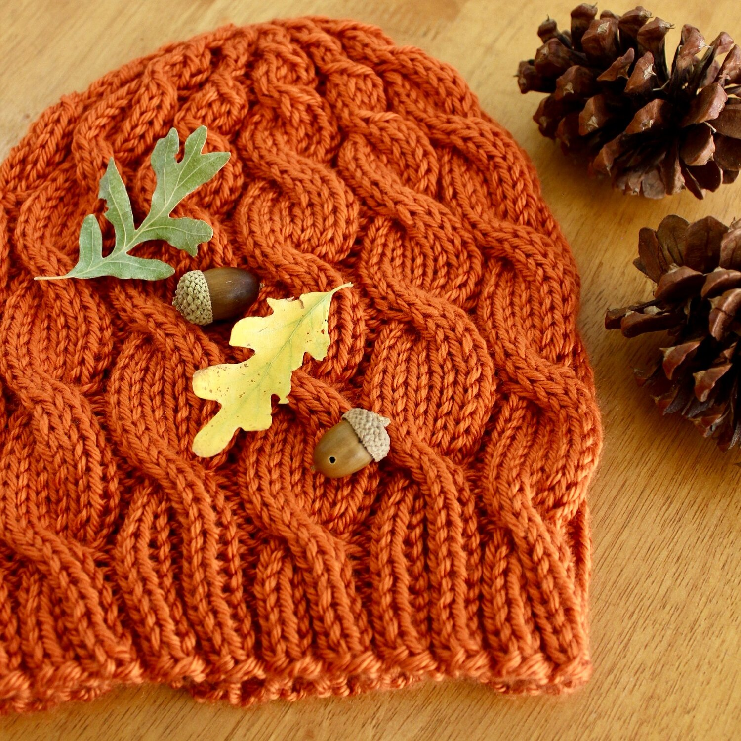 fall cabled hat.JPG