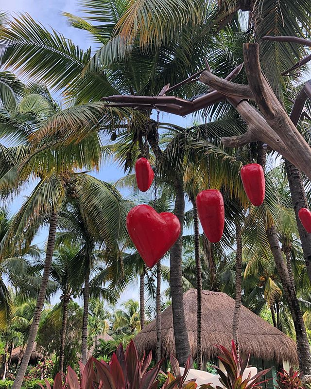 LOVE is in the air at @eldoradoresorts . . . 📷 @realdanabraun