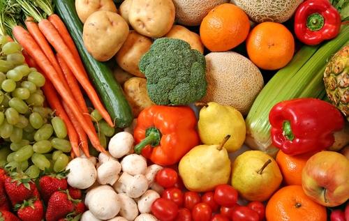 organic_food-1.jpg