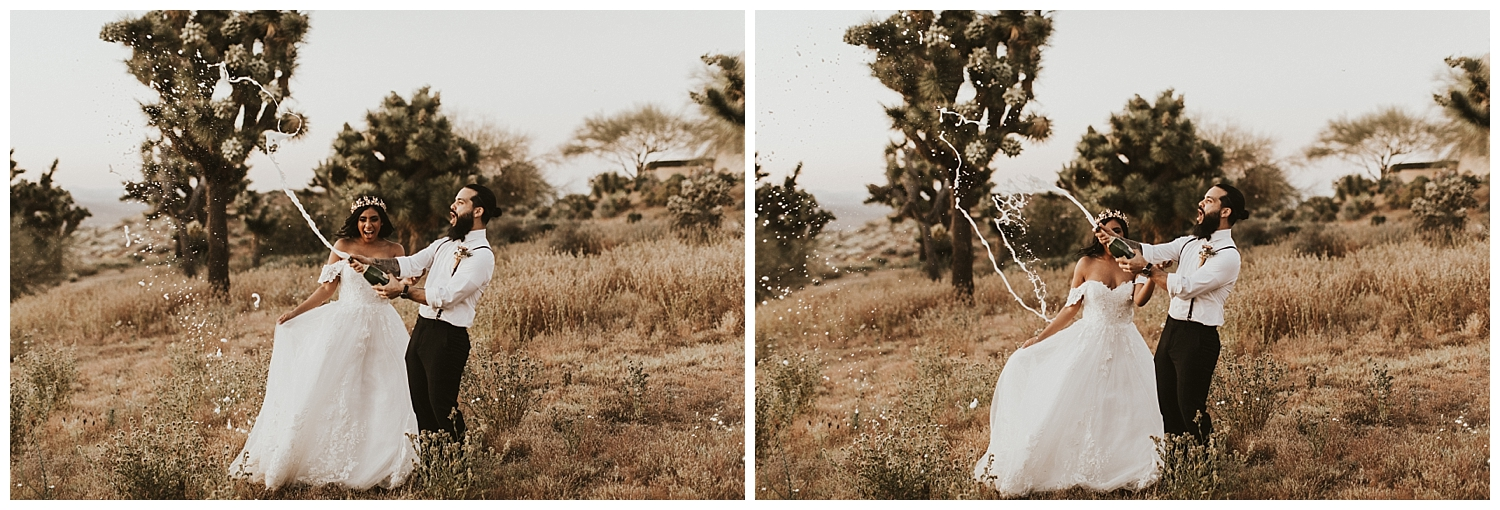 joshua-tree-elopement_0210.jpg